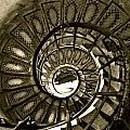 Spirals Down by Lexi Heft