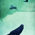 Spirit Bird by Priska Wettstein