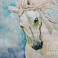Spirit by Tamer and Cindy Elsharouni