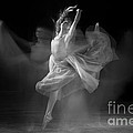 Spirit Dance In Black And White by Cindy Singleton