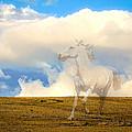 Spirit Horse by Steve McKinzie