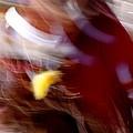 Spirits 4 by Joe Kozlowski
