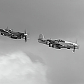 Spitfire And Mustang Black And White Version by Gary Eason