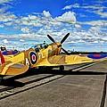 Spitfire by Daniel Harper