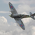 Spitfire - Elegant Icon by Pat Speirs