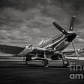 Spitfire In Black And White by Steve Rowland