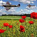 Spitfires And Poppy Field by Ken Brannen