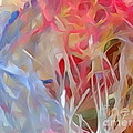 Splash by Diane DiMarco