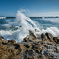 Splash In Motion  by Michael Ver Sprill