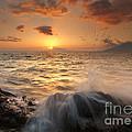 Splash Of Paradise by Mike  Dawson