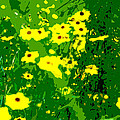 Splash Of Yellow by Norman Johnson