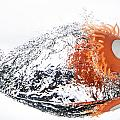 Splashie by Charlie Duncan