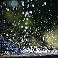 Splashing by Susan Herber