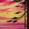 Splendid Sunset Bay by James Williamson
