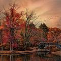 Splendor In The Park by Robin-Lee Vieira
