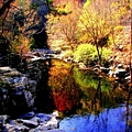 Splendor Of Autumn by Karen Wiles