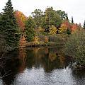 Splendor On A River by Linda Kerkau