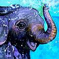 Splish Splash by Debi Starr