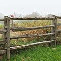 Split-rail Fence - Vertical by Les Palenik