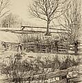 Split Rail Winter Sepia by Steve Harrington