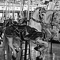 Spokane Carousel by Jani Freimann