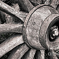 Spokes And Axle by Olivier Le Queinec