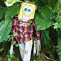 Sponge Bob Scarecrow by Chuck  Hicks