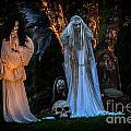 Fantom Women Vinette by Iris Richardson