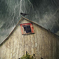 Spooky Old Barn With Crows On A Stormy Night by Sandra Cunningham