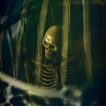 Spooky Skeleton by Innershadows Photography
