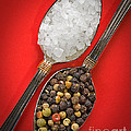 Spoonfuls Of Salt And Pepper by Susan Candelario