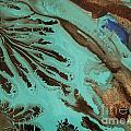 Spot Of Blue by Lisa Payton