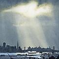Spotlight On The Bay by Janaka Ruiz