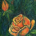 Spotlight Rose by Kendall Kessler