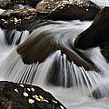 Sprague Creek by Frank Burhenn