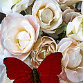 Spray Roses And Red Butterfly by Garry Gay