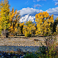 Spread Creek Grand Teton National Park by Greg Norrell