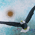 Spread Eagle by Jack Hanzer Susco
