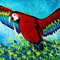 Spread Your Wings by Preethi Mathialagan