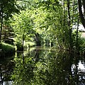 Spreewald  - Germany by Christiane Schulze Art And Photography