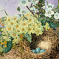 Spring, 1879 by Fanny Jane Bayfield