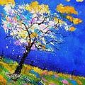 Spring 563140 by Pol Ledent