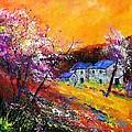 Spring 883111 by Pol Ledent