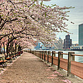 Spring Along The East River by JC Findley