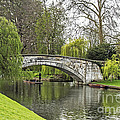 Spring And The River Cam by Elvis Vaughn