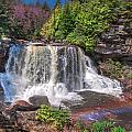 Spring At Blackwater Falls by Mary Almond