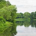 Spring At Kings Pond by Georgia Hamlin