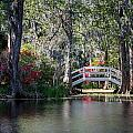 Spring At Magnolia Plantation 3 by Walt  Baker