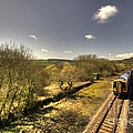 Spring At Seaton Junction  by Rob Hawkins