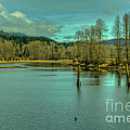 Spring At The Nicomen Slough by Rod Wiens